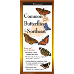 Common Butterflies of the Northeast (folding guide) - Rick Cech