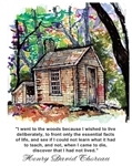 "Walden House ""I went to the woods"" Poster - Marianne Orlando"