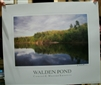 Walden Pond Poster - Bonnie McGrath, photographer