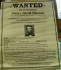 WANTED by U.S. Marshalls: Henry David Thoreau (poster)