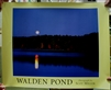 Walden Pond Color Poster - Scot Miller