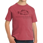 "Youth T-shirt: ""Time is but the stream I go a-fishing in"" with Thoreau Quote"
