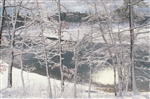 Walden Pond in Winter Postcard - Jim McGrath
