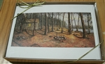 Woodland Visitors Notecards, Set of 10 - Nicholas Santoleri