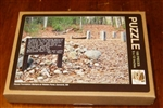 House Foundation Markers at Walden Pond - Jigsaw Puzzle (100 Pieces)